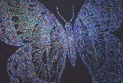 Swallowtail 004 CU