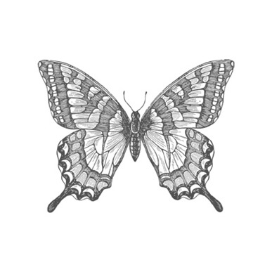 Swallowtail Stamp 129216L