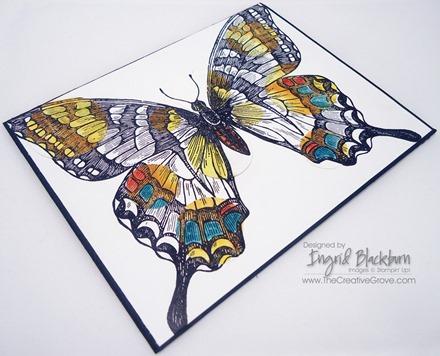 Swallowtail 007 Side