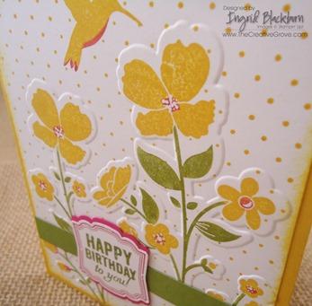 Wildflower Meadow 001 CU