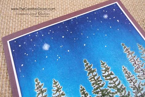 Plant Hope 002 Stars