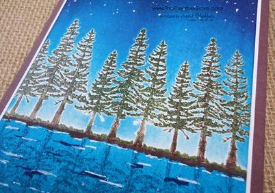 Plant Hope 002 Trees