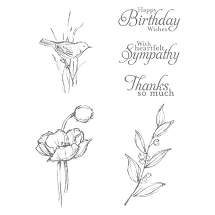 Simply Sketched Stamp Set