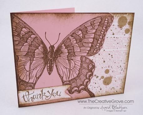 Sassy Gorgeous Grunge Swallowtail Main